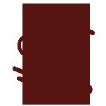 icon_ZIP-line